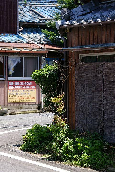 DSC09439.jpg